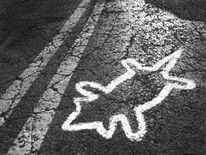 Roadkill???